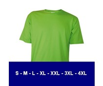 100% cotton T-shirts (available in 13 colors)