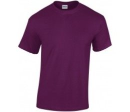Quality T-Shirts available in 44 different colors (available in adult sizes S / XXL)