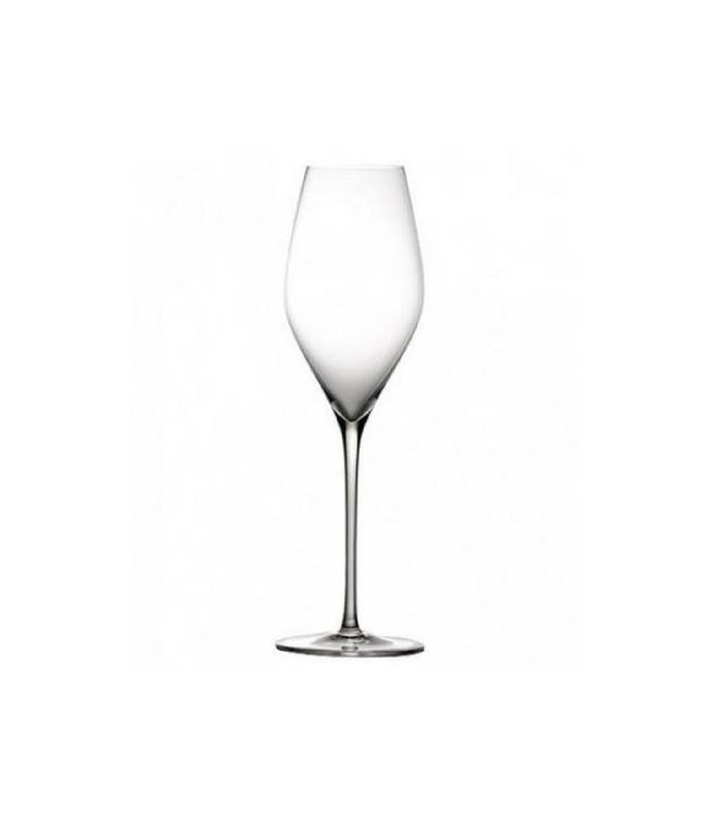 Zafferano Set van 6 VEM Champagne glazen