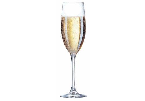 Arcoroc Cabernet Champagne Flute 24cl ( Set van 6 )
