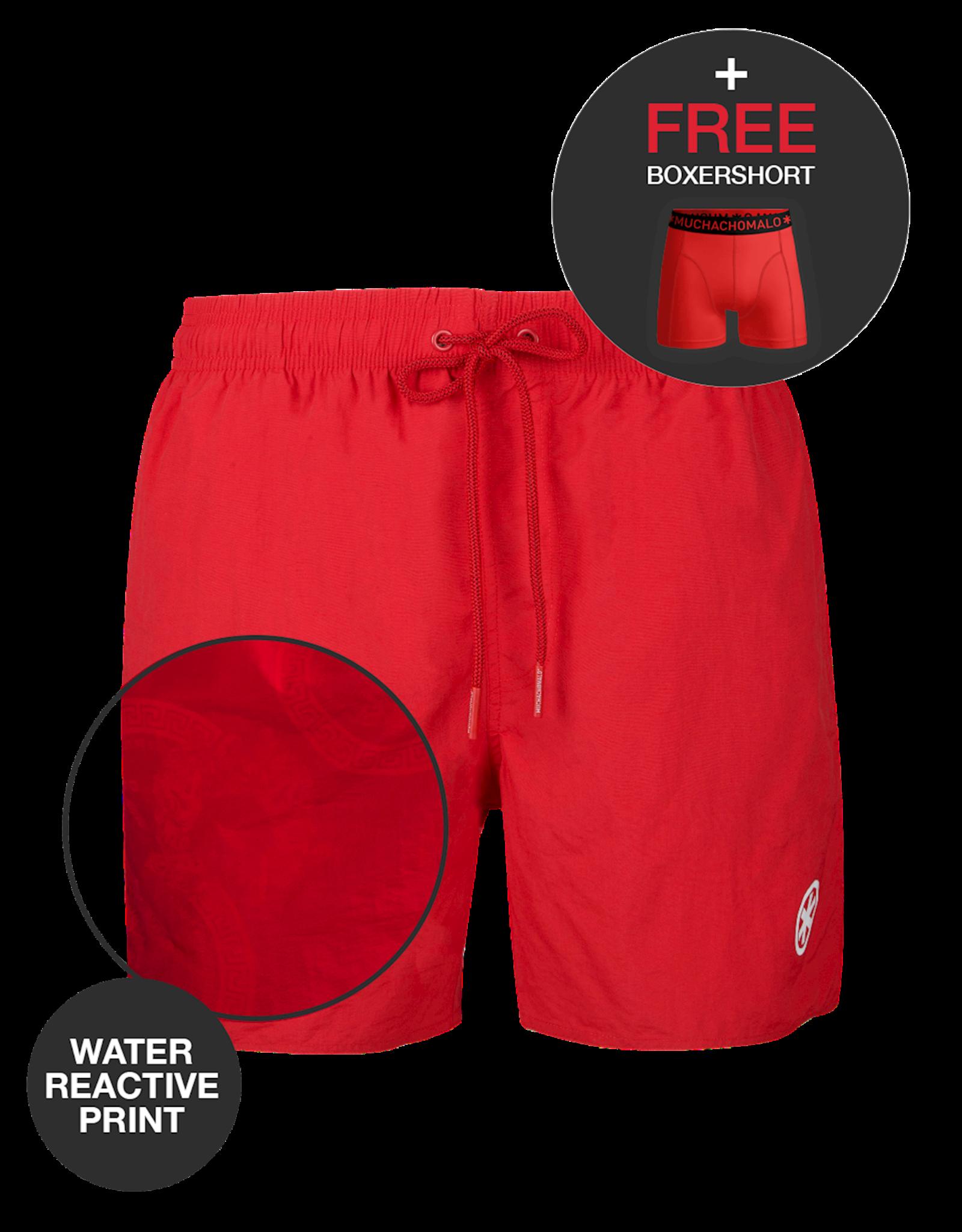 Muchachomalo Swimshort Water React