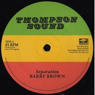 Barry Brown, The Roots Radics | Separation / Scientist In Fine Style