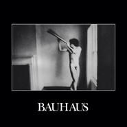 Bauhaus | In The Flat Field