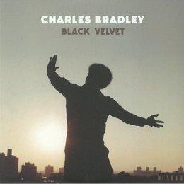 Charles Bradley | Black Velvet
