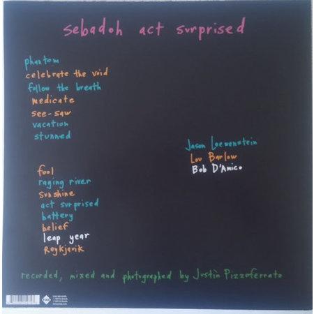 Sebadoh | Act Surprised