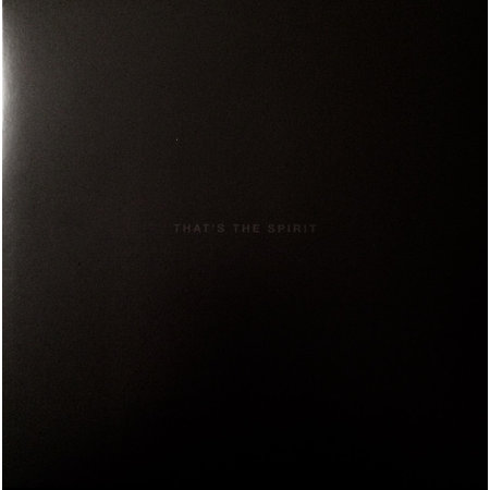 Bring Me The Horizon | That's The Spirit