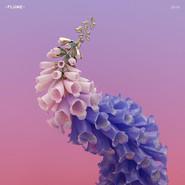 Flume | Skin