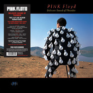 Pink Floyd | Delicate Sound Of Thunder