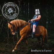 Steve'n'Seagulls | Brothers In Farms