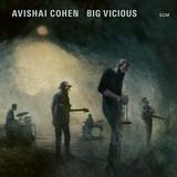 Avishai Cohen | Big Vicious