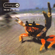 The Prodigy | The Fat Of The Land
