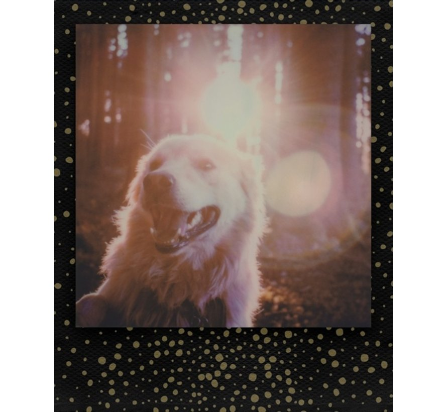Polaroid Color instant film for 600 - Gold dust edition