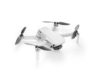 DJI DJI Mavic Mini drone
