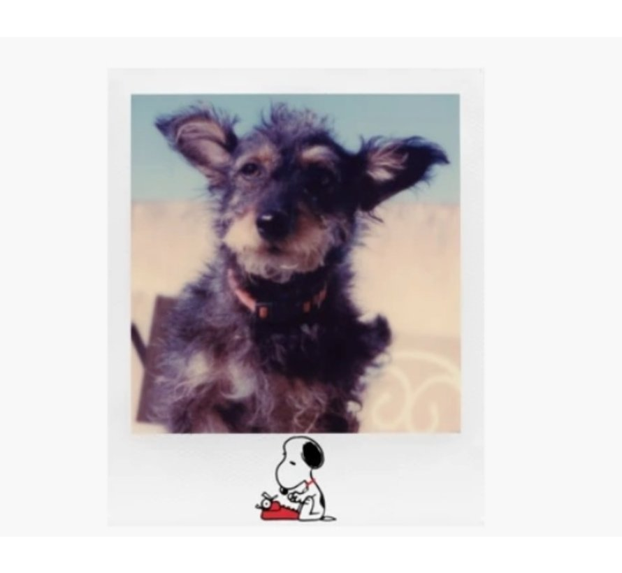 Polaroid instant film I-type - Peanuts edition
