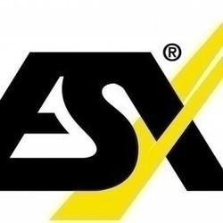 ESX Quantum QM66SP - processor 6-kanaals