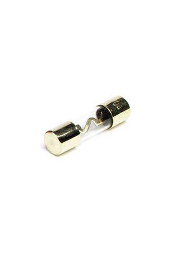 AGU glas zekering 30 ampère