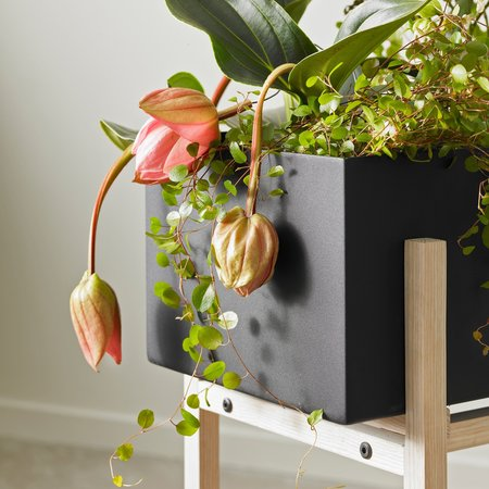 DESIGN HOUSE STOCKHOLM BOTANIC STAND PLANT BOX