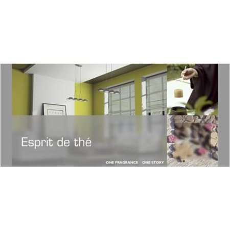 ESTEBAN DESIGN ESPRIT DE THE ROOM SPRAY