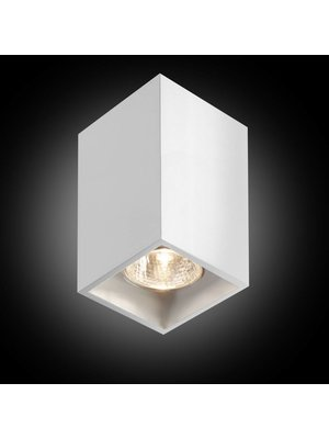 B-Lighted Pure 1/125 plafondlamp