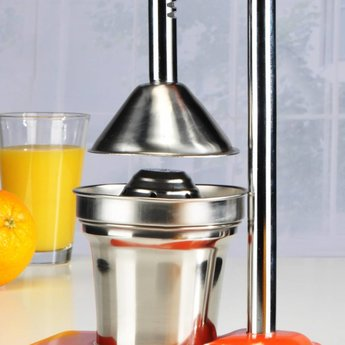 HI Oranje RVS Citruspers