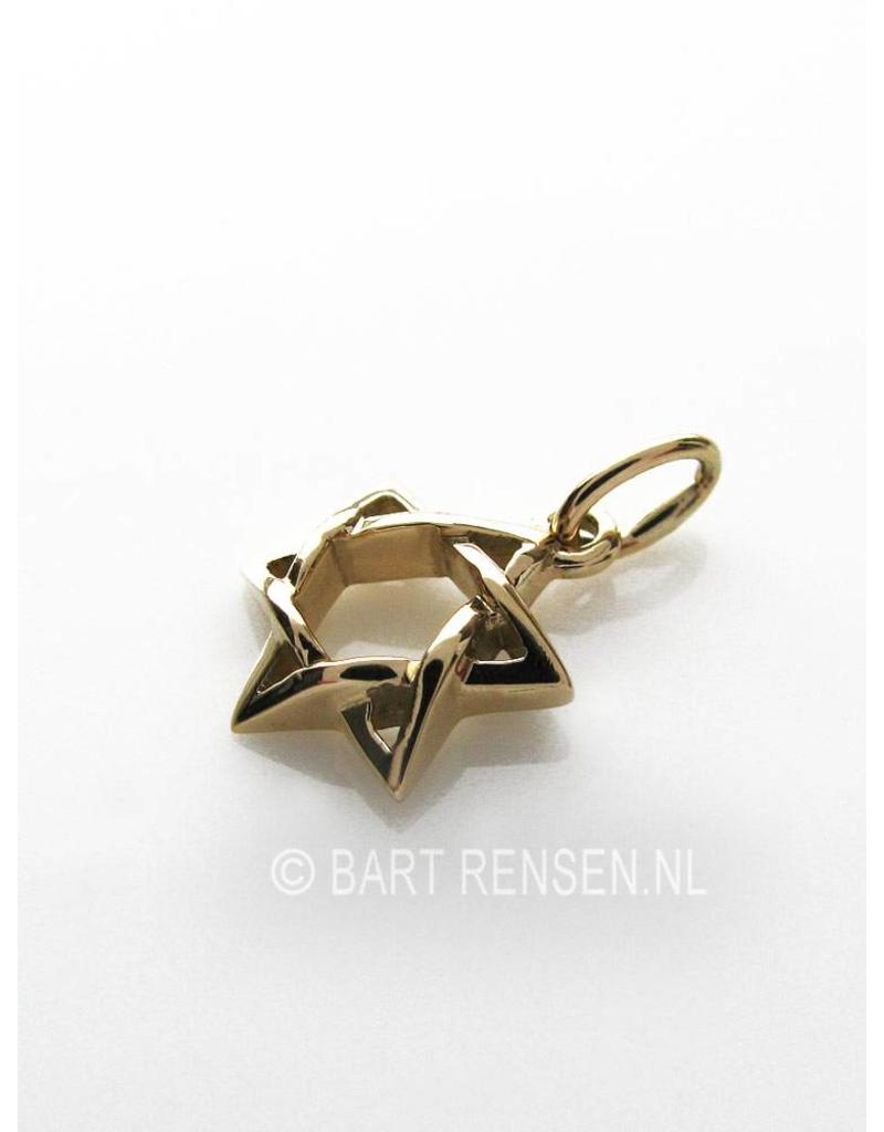Hexagram hanger - 14 krt goud