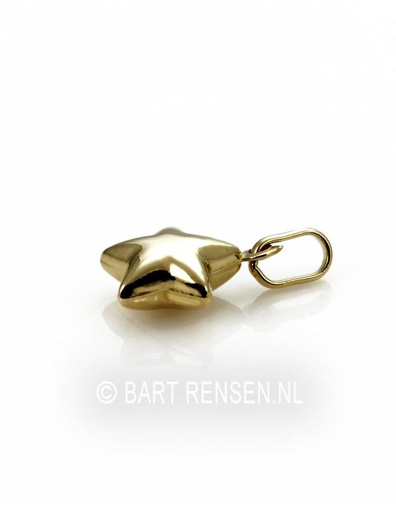 Gouden Ster hanger- 14 krt goud