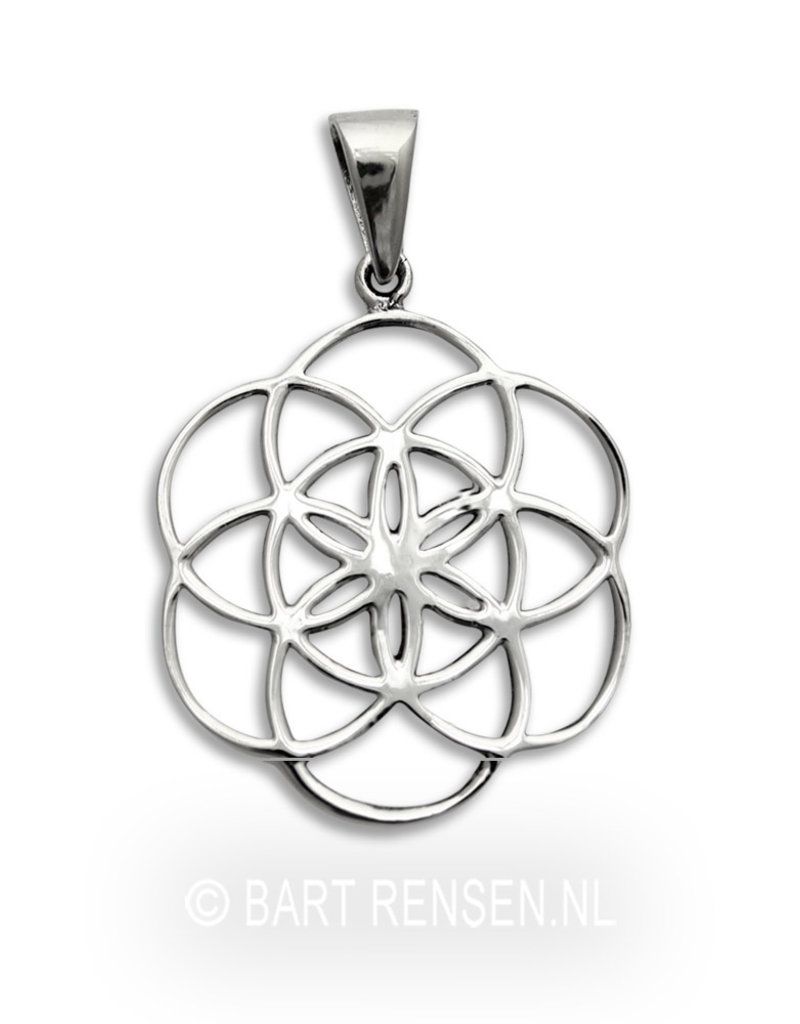 Seed of Life pendant-sterling silver