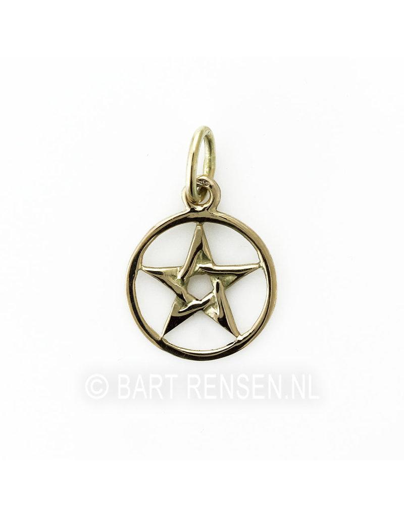 Pentagram hanger - 14 krt goud