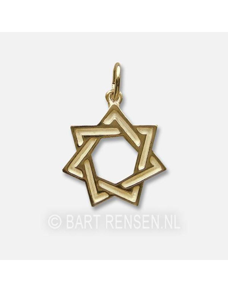 Zeven-ster hanger - 14 krt goud
