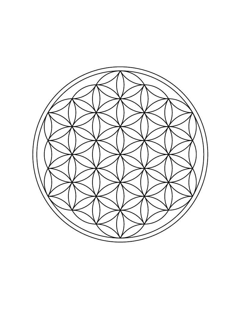 Engraving - Flower of Life