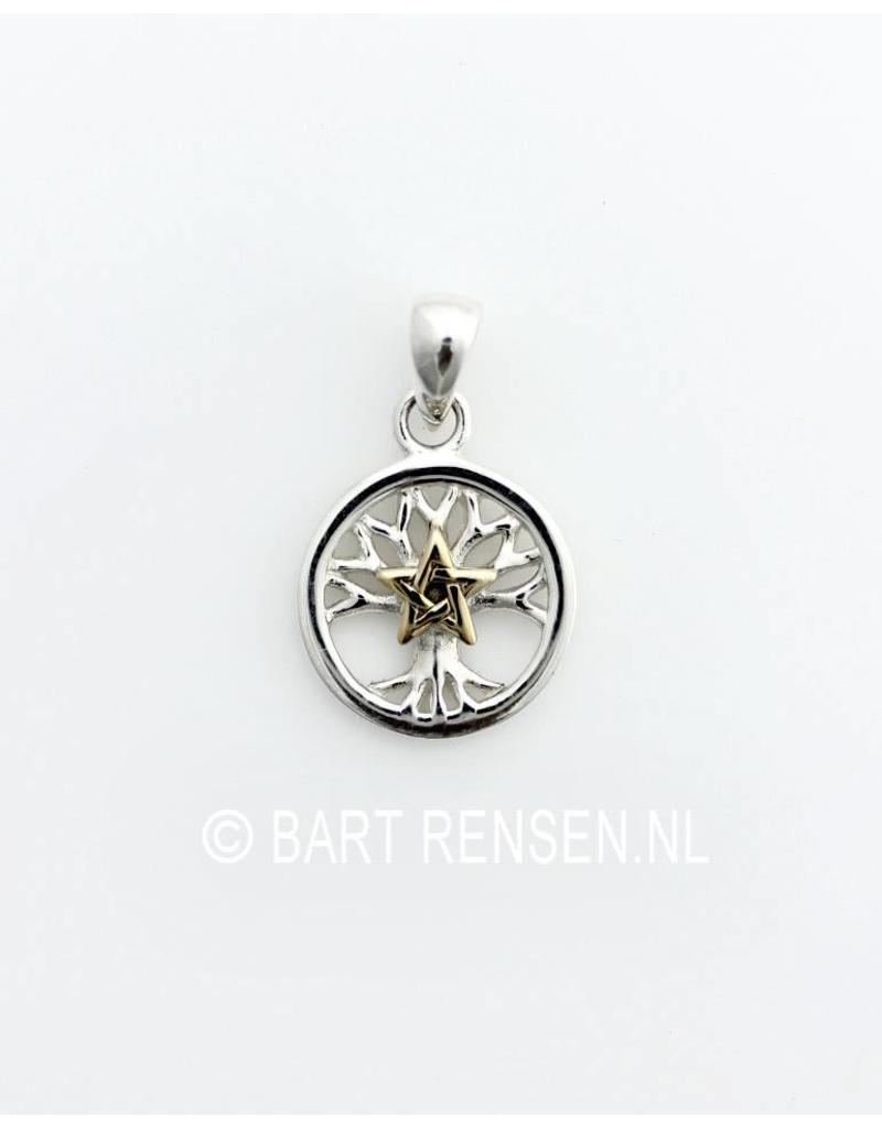 Pentacle - Tree of Life pendant - sterling silver