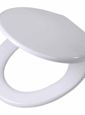 Tiger Soft-close toiletbril Burton Duroplast wit 251460646