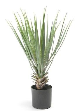 Emerald Kunstplant yucca groen 50 cm 11.634C