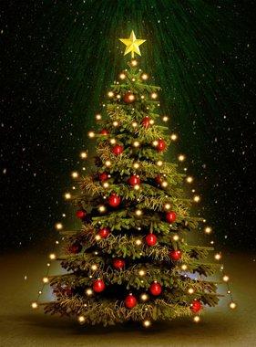 vidaXL Kerstboom netverlichting 180 LED's binnen en buiten IP44 180 cm
