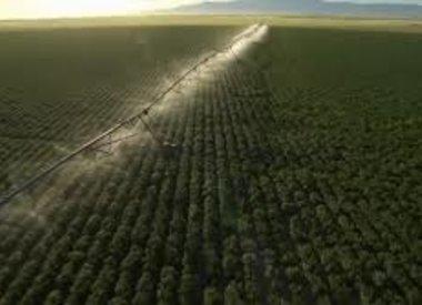 Beregening en irrigatie