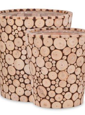 vidaXL Plantenbakken echt hout 2-delig