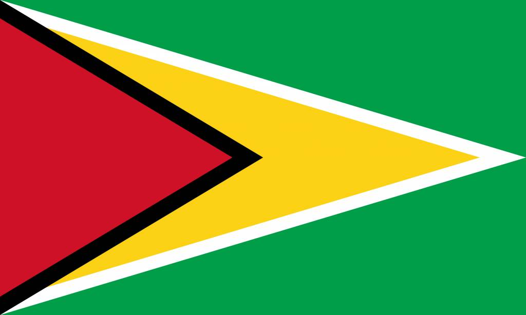 Guyana flag image - country flags