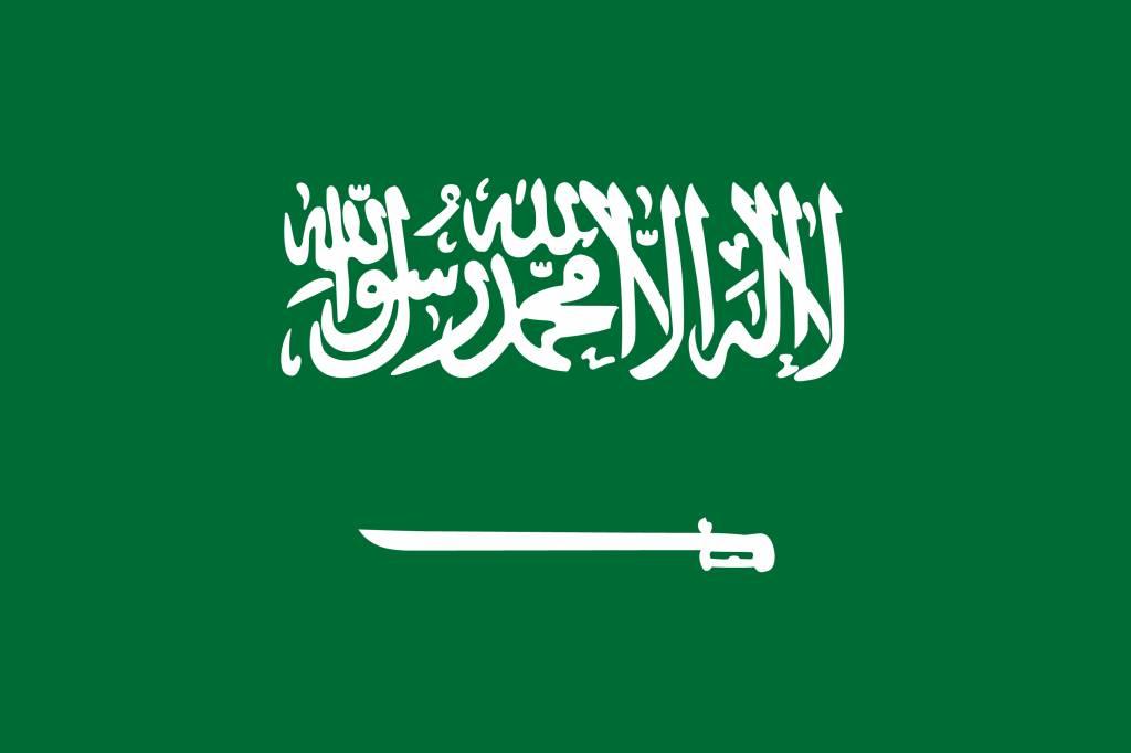Saudi Arabia flag vector - country flags