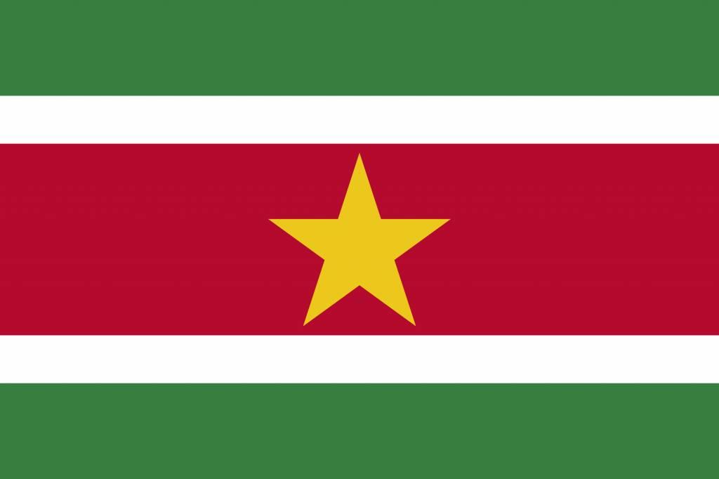 Kleurplaten Landen Europa.Suriname Vlag Kleurplaat Country Flags