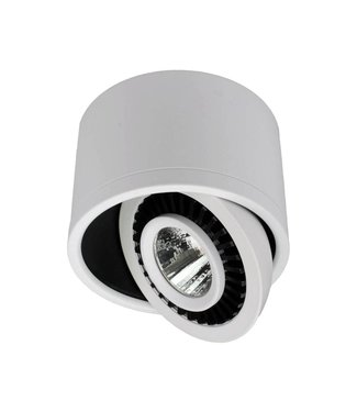 Richtbare opbouw led spot, 5 Watt, Dimbaar, Warm wit