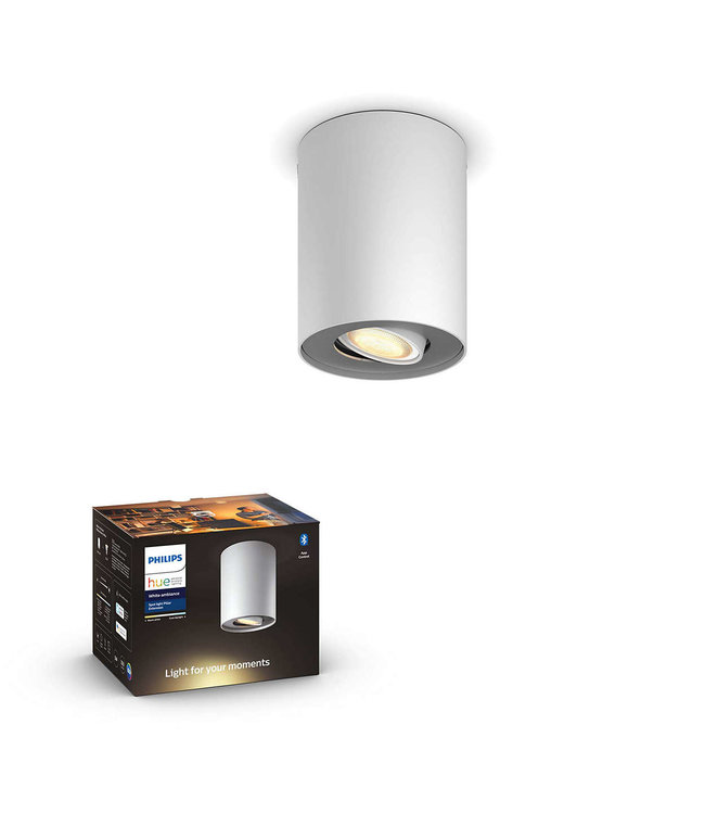 Philips Hue Philips Hue Armatuur Opbouw, 1 spot,  White Ambiance, Wit