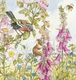 Molly Brett, Chaffinch field Mouse... PCE 065