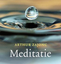 Arthur Zajonc, Meditatie