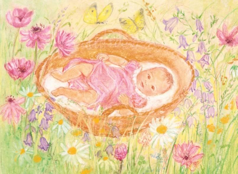 Marjan van Zeyl, Baby in mandje  (452)