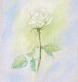 Marjan van Zeyl, Witte Roos  (336)