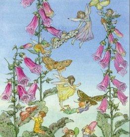 Medici Molly Brett, Fairies and Foxgloves, PCE 176