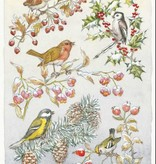 Medici Molly Brett, Five different birds on five different branches PCE 149