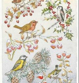 Medici Molly Brett, Five different birds on five different branches PCE 149
