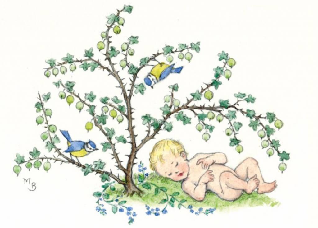 Medici Molly Brett, Baby under a gooseberry bush with blue tita PCE 210