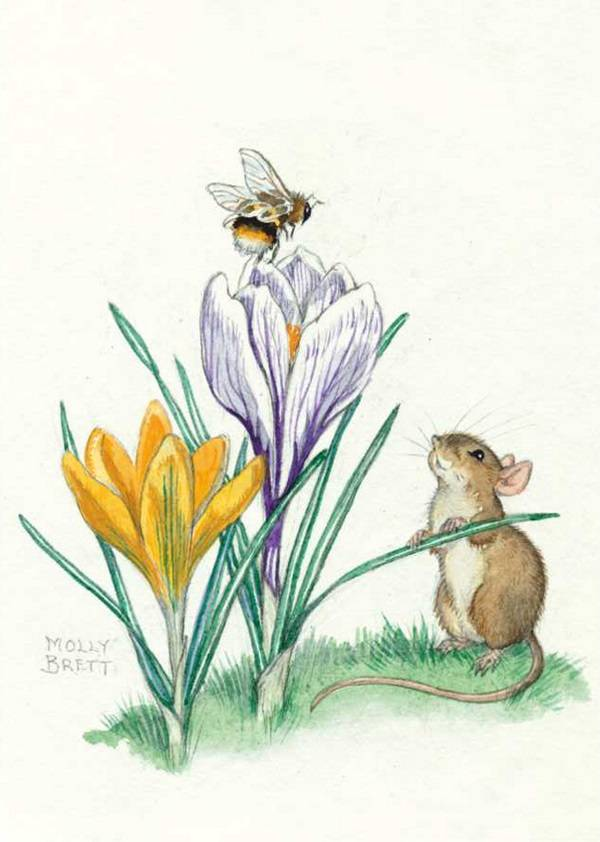 Medici Molly Brett, A bee sits atop a purple flower as a mouse watches on  PCE 217